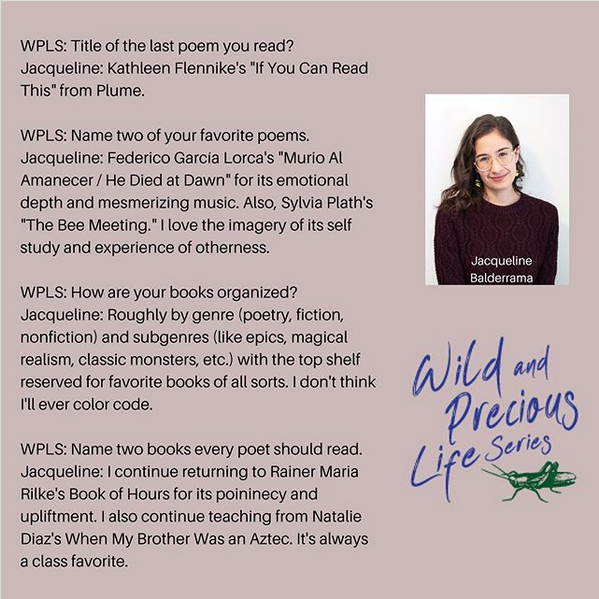 Wild and Precious Life Series_Instagram Q&A